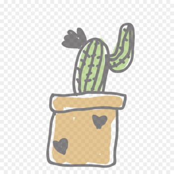 Cactus png image transparent background