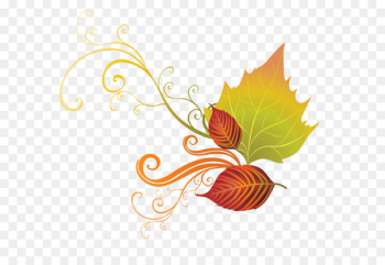 Autumn leaf color Clip art - Fall Leaves Decor PNG Clipart  png image transparent background