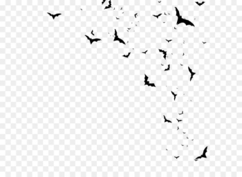 Icon - Bats  png image transparent background