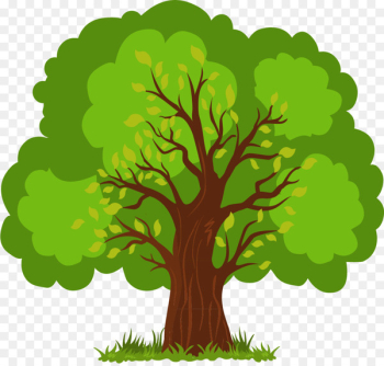 Euclidean vector Tree - Vector Hand-painted lush tree  png image transparent background