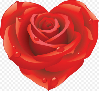 Sticker Love Rose Heart - red rose decorative  png image transparent background
