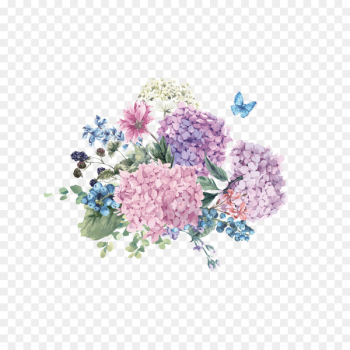 Hydrangea Flower Watercolor painting Illustration - Butterfly flowers hand painted free to pull  png image transparent background