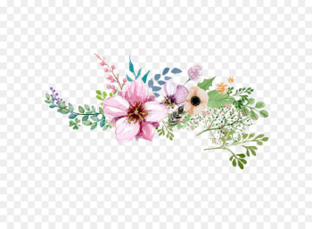 Flower - Hand painted watercolor flower decoration pattern  png image transparent background