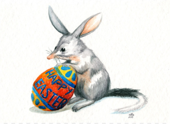 Easter Bunny Australia Easter Bilby Greater bilby An Aussie Easter - Easter Rabbits Pictures  png image transparent background