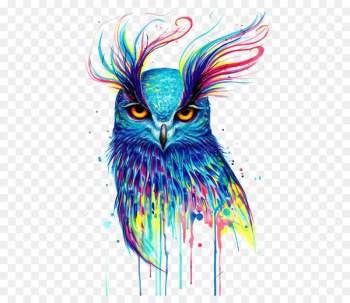 Owl Canvas print Printing Painting - owl  png image transparent background
