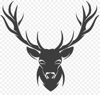 Deer Stencil Drawing - horns  png image transparent background