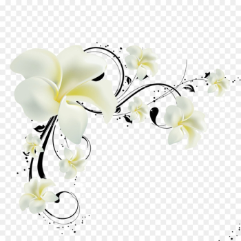 Paper Wall Television Wallpaper - Flowers  png image transparent background