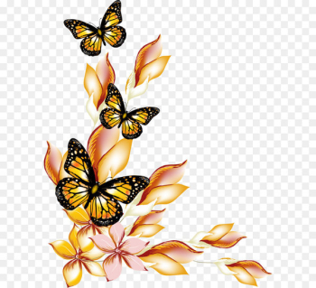 Butterfly Flower - Flowers and butterflies borders vector  png image transparent background