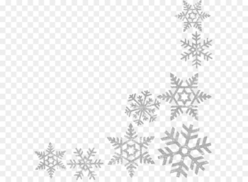 Wells Branch Community Library Central Library Snowflake Clip art - Snowflakes border frame PNG image  png image transparent background