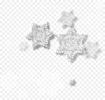 White Snowflake - Vector Snowflakes  png image transparent background