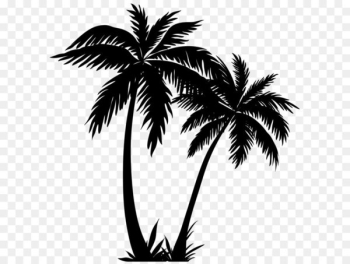 Arecaceae Silhouette Sunset - Palm Trees Silhouette PNG Clip Art Image  png image transparent background