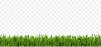 Portable Network Graphics Lawn Image Golf Artificial turf - golf  png image transparent background