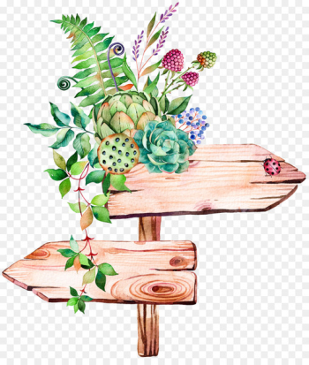Succulent plant Watercolor painting Illustration - Hand-painted signs  png image transparent background