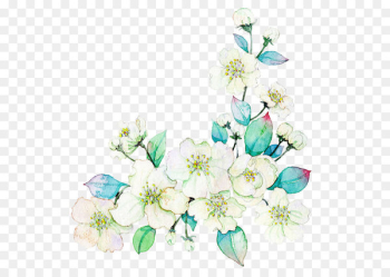 Watercolor painting Flower Download Illustration - White flowers  png image transparent background