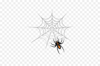 Spider web Web design Clip art - Vector spider  png image transparent background