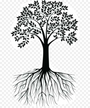 Wall decal Root Tree Clip art Illustration - tree  png image transparent background