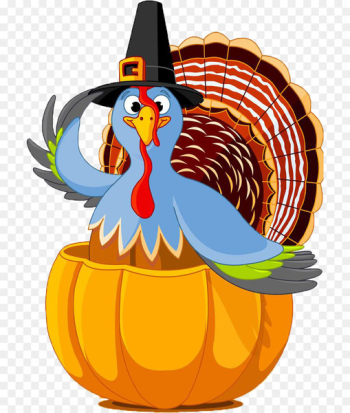 Public holiday Thanksgiving Day Turkey - Thanksgiving cartoon turkey decoration  png image transparent background