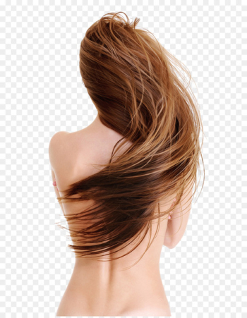 Hairstyle Artificial hair integrations Beauty Parlour - Hair  png image transparent background