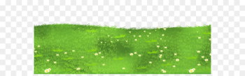 Lawn Grasses Clip art - Grass Ground with Daisies PNG Clipart  png image transparent background
