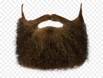 World Beard and Moustache Championships Clip art - Beard  png image transparent background