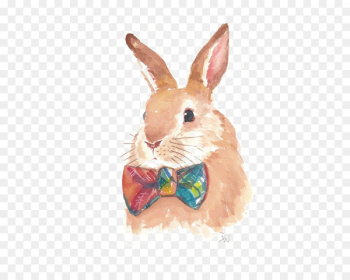Hare Watercolor painting Rabbit Drawing - rabbit  png image transparent background