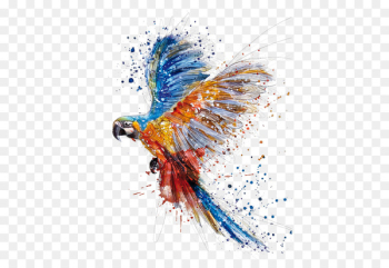 Parrot Bird Watercolor painting Drawing - parrot  png image transparent background