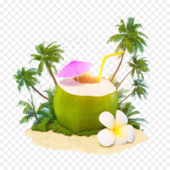 Cocktail Juice Coconut water Coconut milk - Coconut milk  png image transparent background