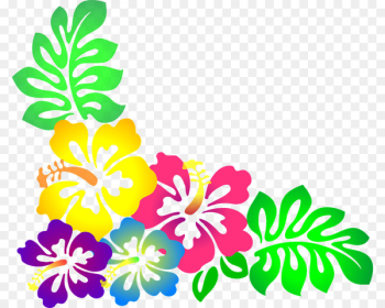 Hawaiian Borders and Frames Flower Clip art - moana  png image transparent background