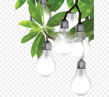 Incandescent light bulb Lighting LED lamp Light-emitting diode - Lamps  png image transparent background