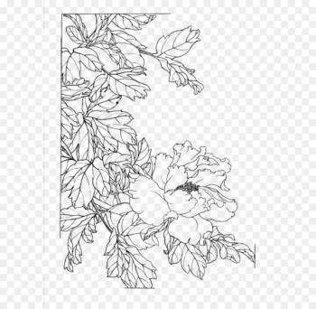 Gongbi Chinese painting Flower Sketch - Peony flower painted line drawing  png image transparent background