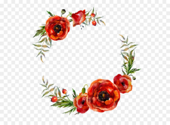 Poppy Flowers Watercolor painting - Flower garlands  png image transparent background