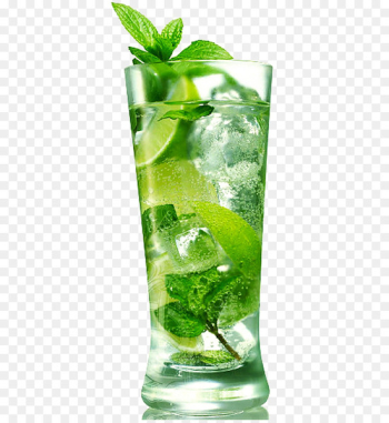 Mojito Cocktail Carbonated water Light rum - mojito  png image transparent background