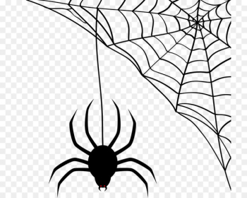 Spider-Man Spider web Scalable Vector Graphics - spider  png image transparent background