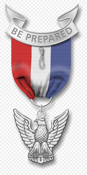 Eagle Scout Boy Scouts of America Scouting Medal Clip art - medal  png image transparent background