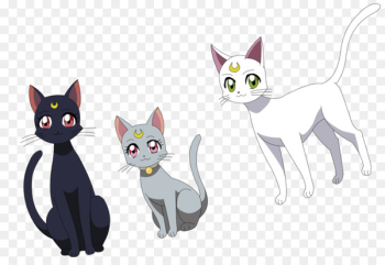 Luna, Artemis, and Diana Luna, Artemis, and Diana Sailor Moon Cat - Whiskers  png image transparent background