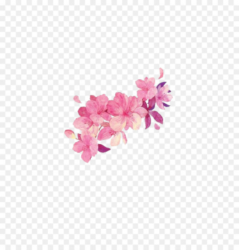 Flower Watercolor painting - Free pink flower matting  png image transparent background