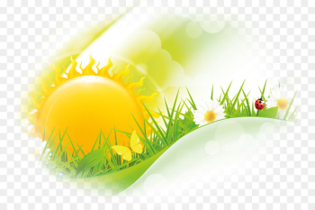 Friday Morning Wish Greeting Happiness - Cartoon sun  png image transparent background