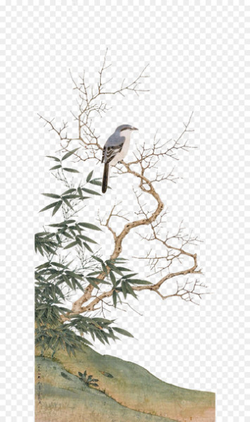 China Chinese painting - Chinese birds on the branches of Chinese culture  png image transparent background
