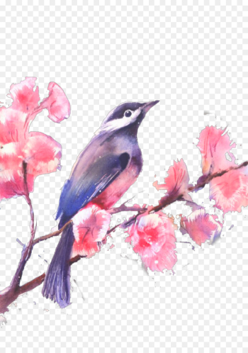 Watercolor Painting, Drawing, Painting, Bird, Watercolor Paint PNG png image transparent background