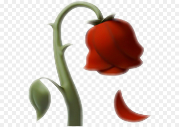 Emoji, Emojipedia, Iphone, Vegetable, Bell Peppers And Chili Peppers PNG png image transparent background
