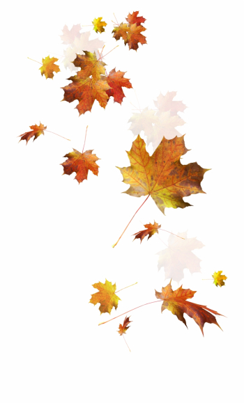Autumn Color Leaves Leaf Falling Download Hd Png Clipart - Falling ... png image transparent background