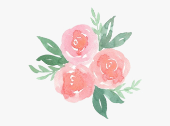 Scrose Rose Cute Aesthetic Pastel Pretty Flower Flowers ... png image transparent background