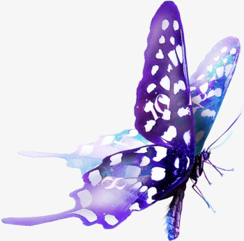 Nature Animals,beautiful Purple Butterfly, Butterfly Clipart ... png image transparent background