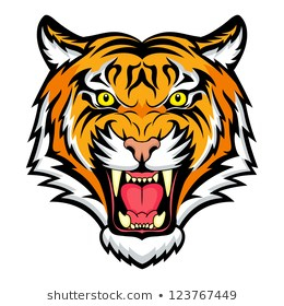 Tiger Head Images, Stock Photos & Vectors   Shutterstock png image transparent background