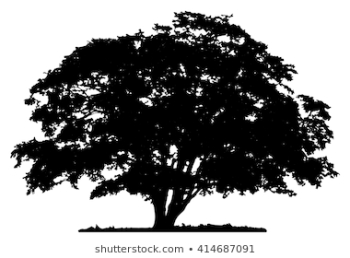 Tree Silhouette Images, Stock Photos & Vectors | Shutterstock png image transparent background