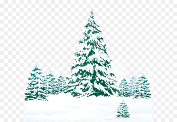 Christmas Tree Snow png image transparent background