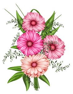 164 Best PNG Flowers images in 2019 | Flower art, Moldings ... png image transparent background