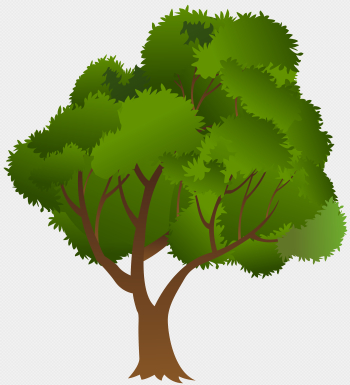 Tree PNG Clip Art Image | Gallery Yopriceville - High-Quality ... png image transparent background