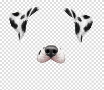 Dalmatian dog Puppy Snapchat Dancing Hot Dog, posters aesthetic beauty salons transparent background PNG clipart png image transparent background