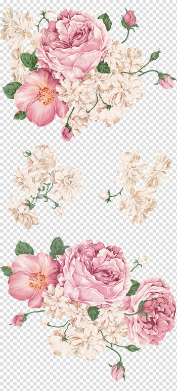 Peony Drawing Painting, Hand-painted peony, pink and white flowers transparent background PNG clipart png image transparent background
